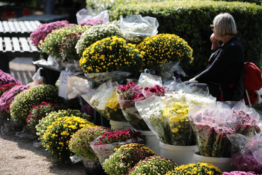 Ponuda cvijeća uoči blagdana Svih Svetih ove je godine slabija nego lani
