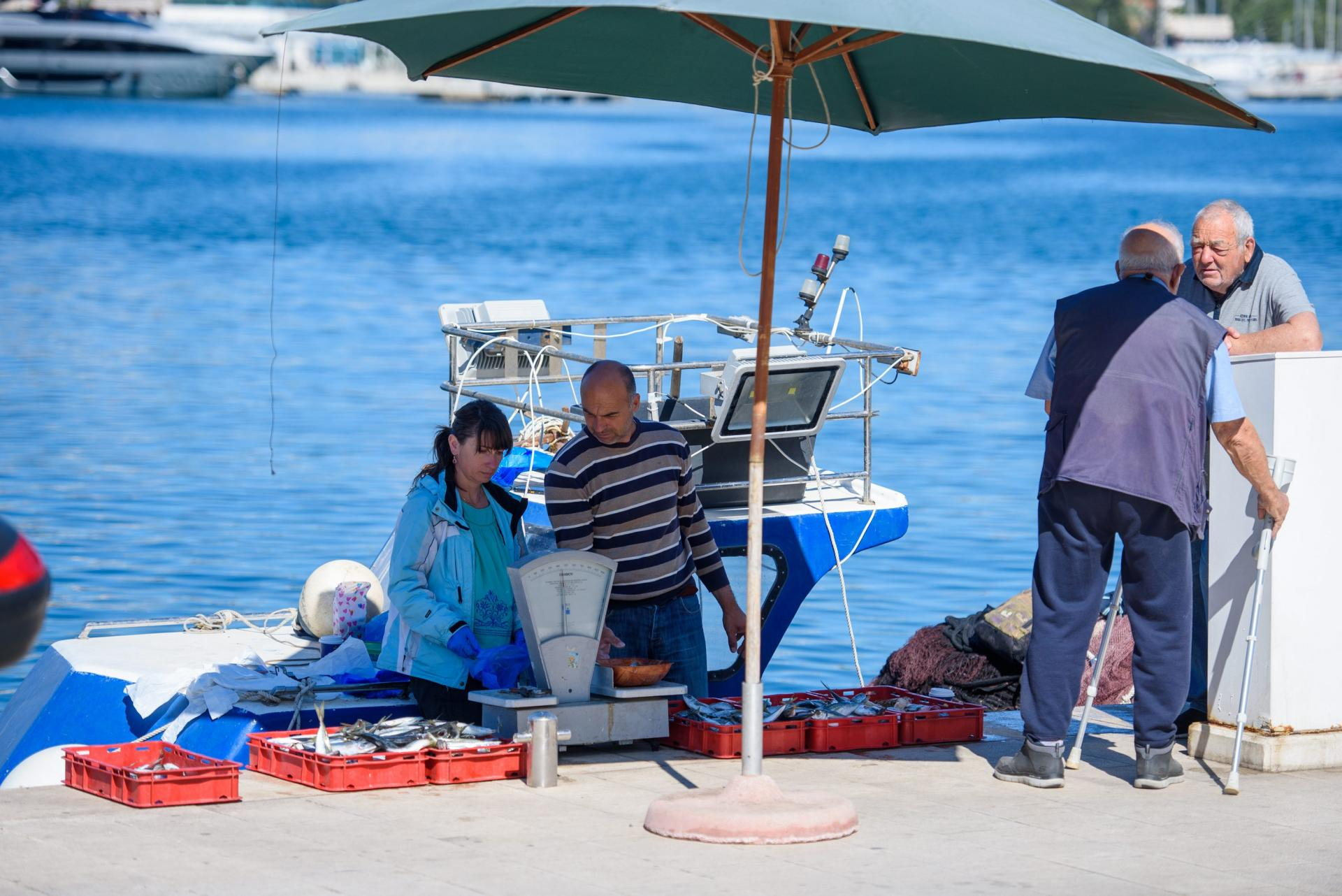 prodaja ribe