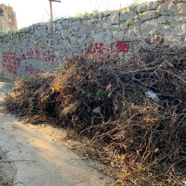 Grafiti i odbačeni biljni otpad nasred šetnice na Gornjem Konalu