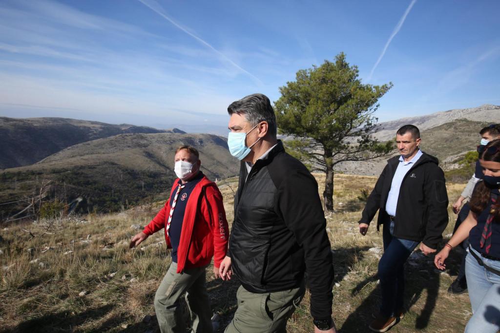 <br /> Predsjednik Republike Hrvatske Zoran Milanovic sudjelovao u volonterskoj akciji posumljavanja pozarista na Mosoru.<br />