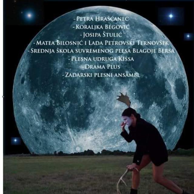 Plakat Večeri plesne minijature