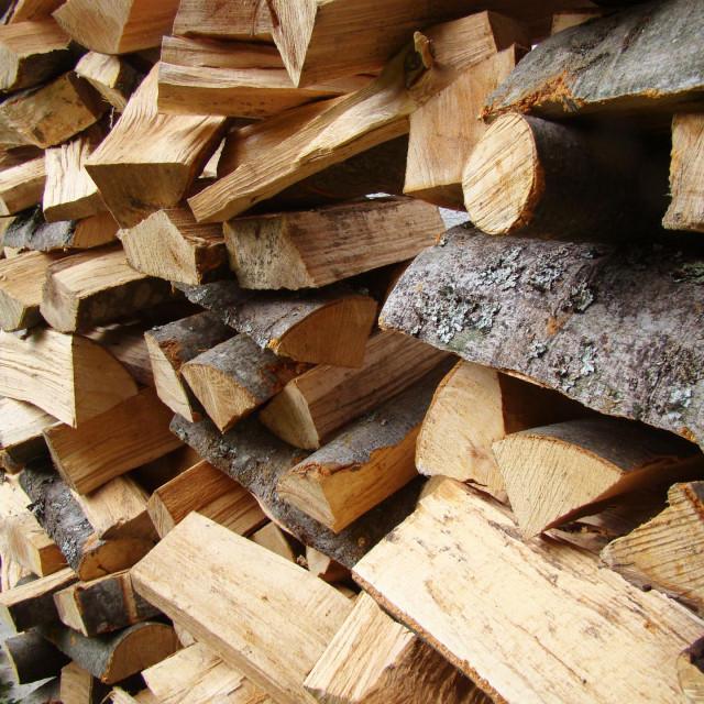 Prednost biomase u odnosu na ostale obnovljive izvore energije je u tome što se može koristiti u svojem izvornom obliku, poput npr. ogrjevnog drva, ali se također može i preraditi u biogoriva