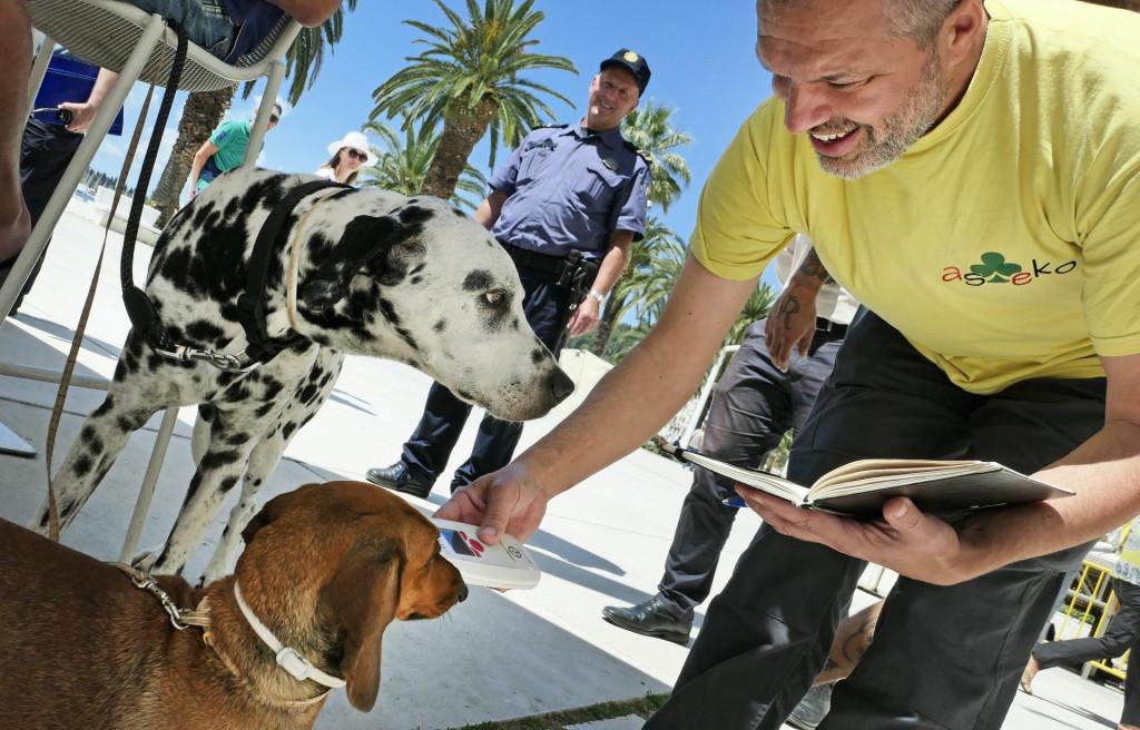 Kontrola čipiranih pasa po gradskim ulicama