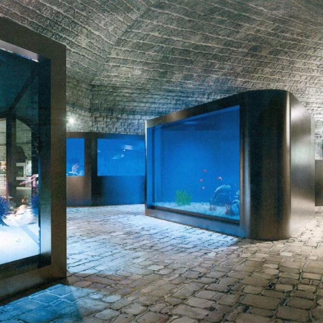 Budući izgled - bazeni u razini očiju kako bi pogled na svijet iz podmorja Jadrana bio još fascinantniji