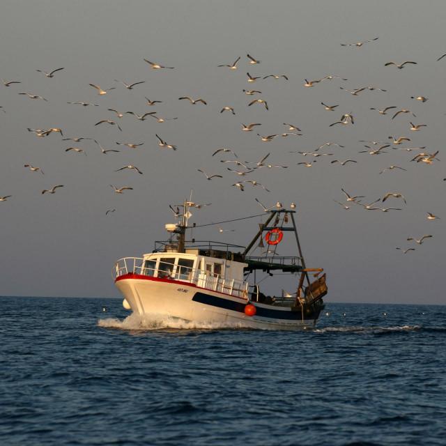 Naše ribare neće pogoditi talijansko proglašenje, osim što će ih biti sram zbog ponašanja naše države prema svome moru