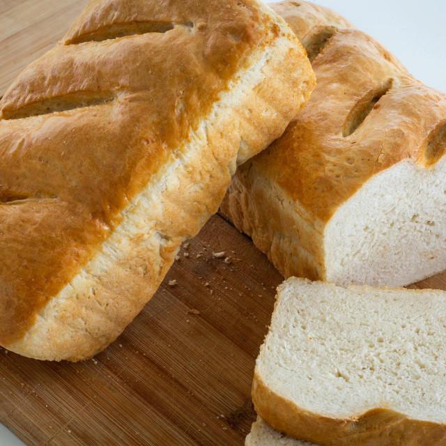 Hrvati su pitali 'kako napraviti kruh', ali i 'kako manje misliti'