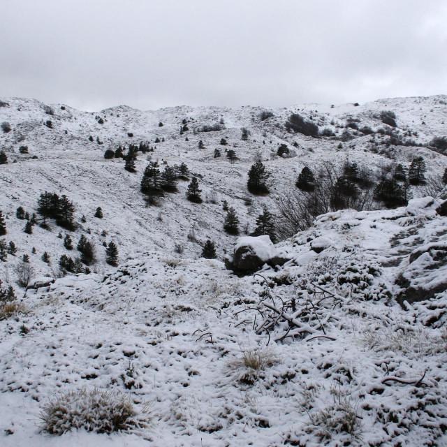 Snijeg se zadržao na visini iznad 1000 metara, a palo je 5-6 centimetara<br />
