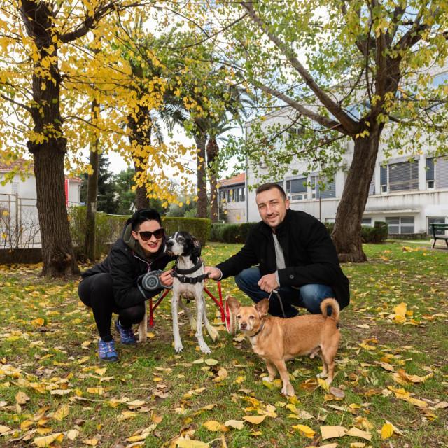 Lola, Mira i Teo