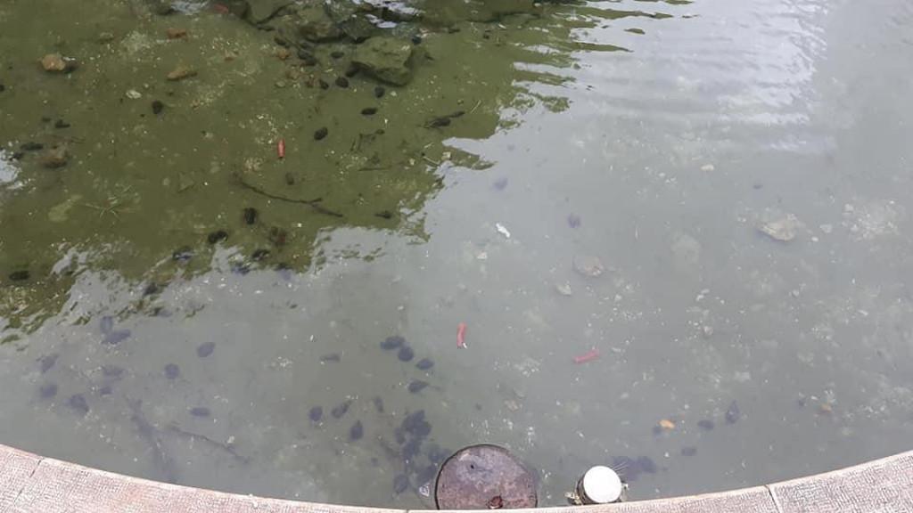Posljedice petardavanja u bazenu fontane na Gracu