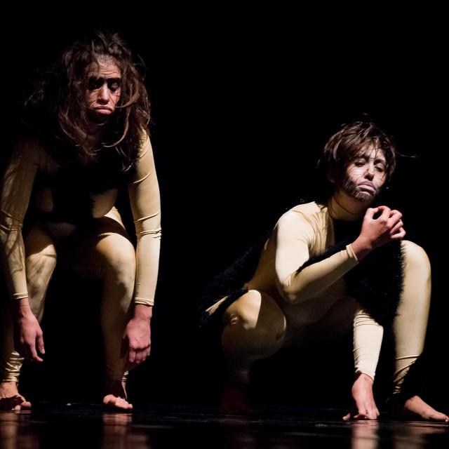Predstava počinje evolucijom čovjekolikih majmuna u predatore<br />