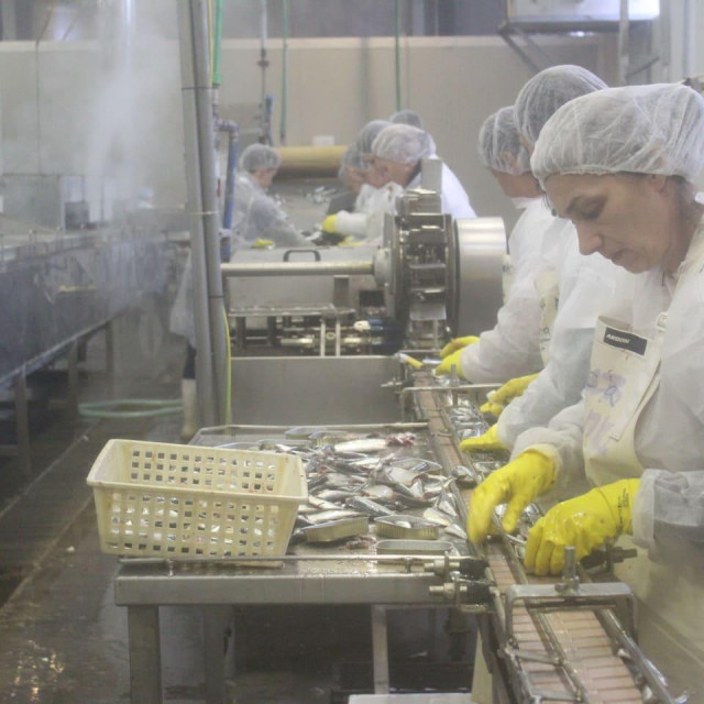 Tvornica za preradu ribe Žuvela HB Stolac, BiH