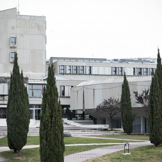 Marija PavkovićiStipe Romić studirali su na FESB-u, a Mirela Rezo na PMF-u