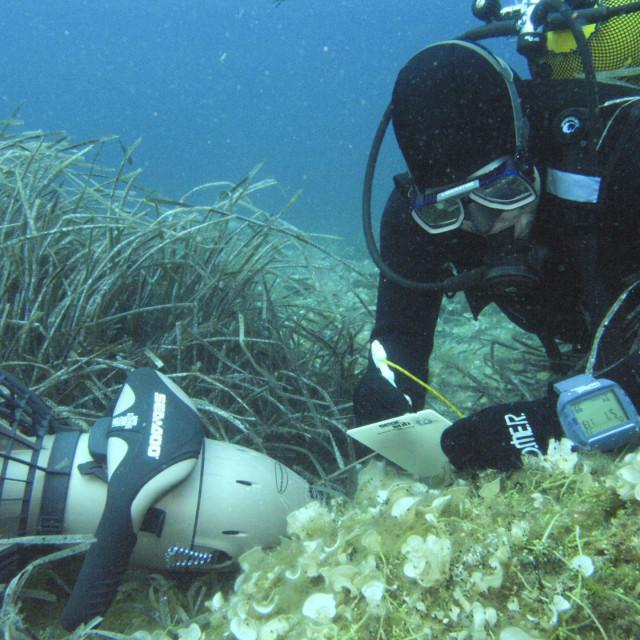 Istraživanja pod morem