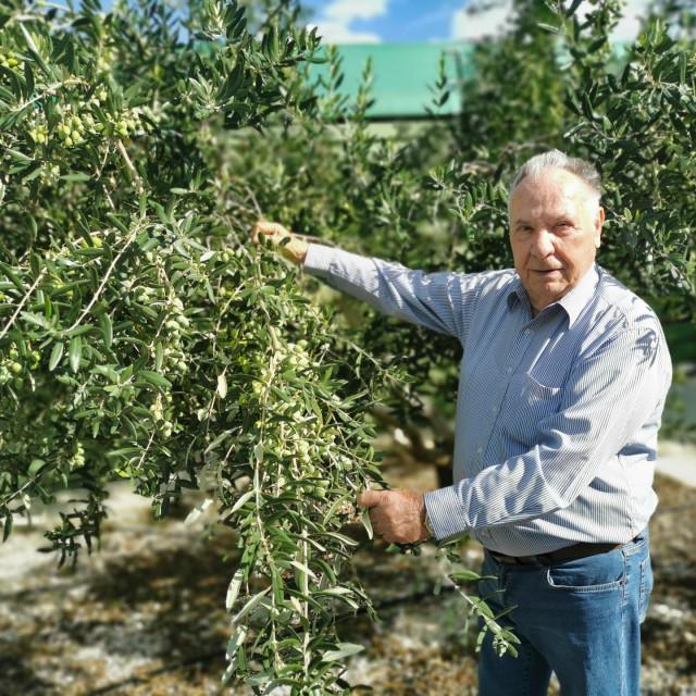Ivan Šimunović sa 4800 stabala i urodom preko sto tona bez premca je na otoku