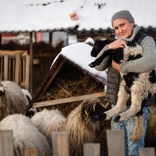 Marina Ferenčić iz udruge Lajka brine o životinjama
