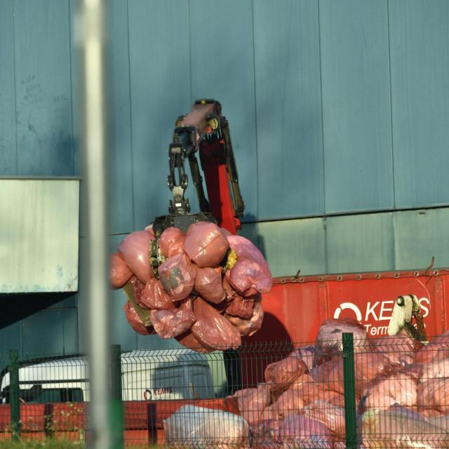 Ogromna količina otpada u vrećama uz KB Dubarava