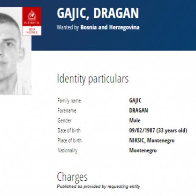 dragan gajić, tjeralica interpola, jedan od organizatora lanca krijumčara marihuane koji su uhićeni u imotskom