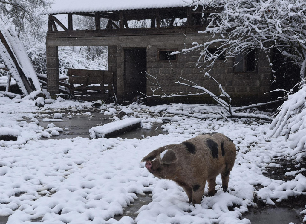 'U tom selu dosta je obitelji ostalo bez krova nad glavom', svjedoče naši sugovornici