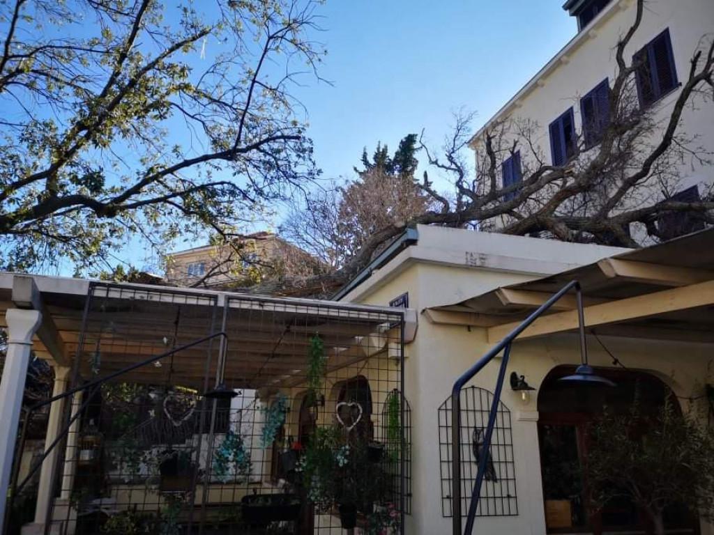 Odlomljena grana stabla poklopila je krov restorana Ruzmarin u Župi dubrovačkoj