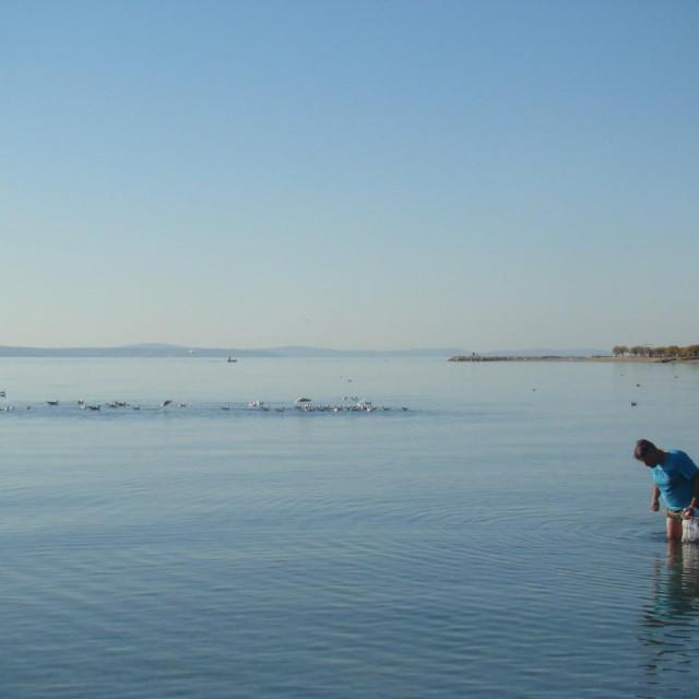 Mirno more i velika oseka - idealno vrijeme za lov