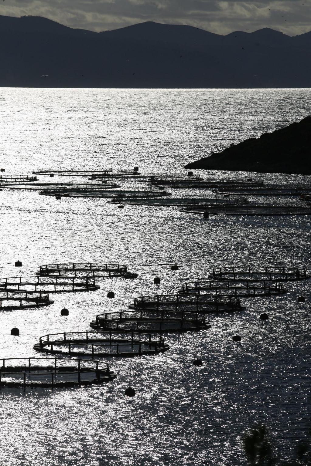 Kazna za ribolov unutar 300 metara od uzgajališta je 2000 do 5000 kn