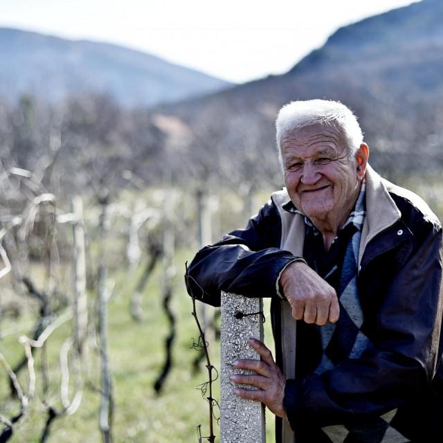 Ivan Birčić u miru svojih maslina