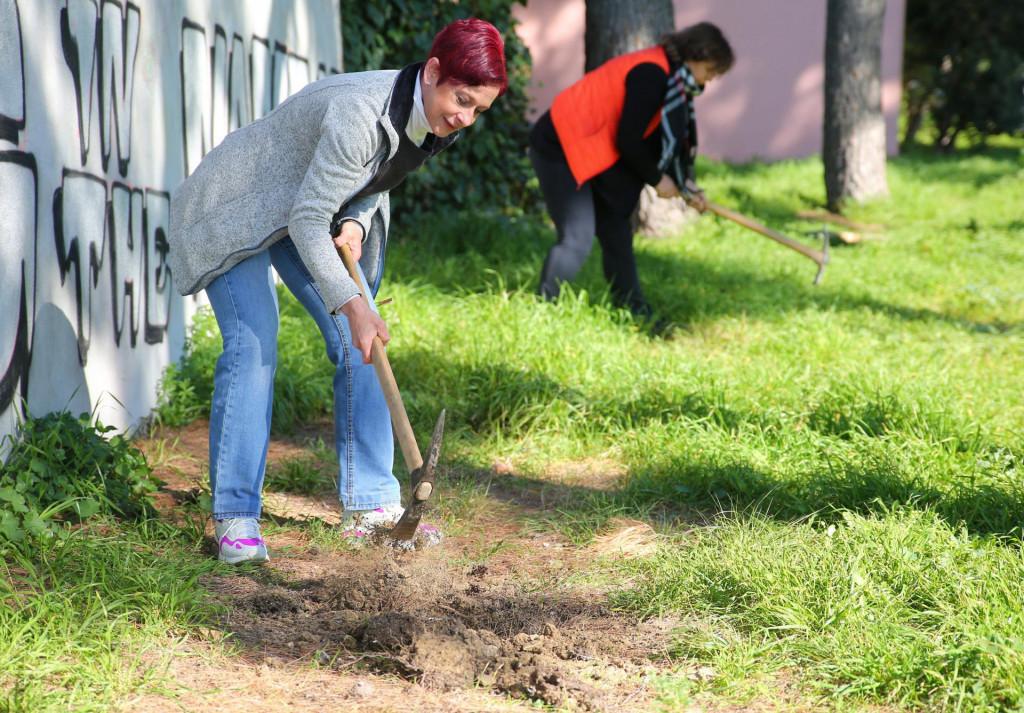 Volonteri su se prihvatili posla