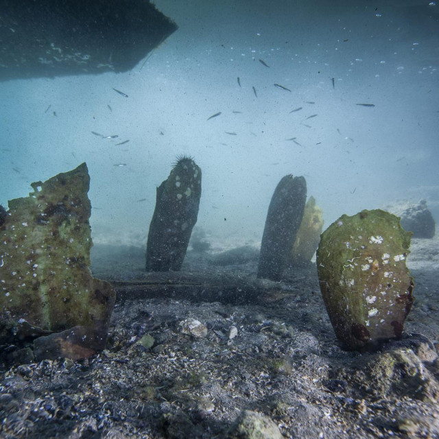 Pomor periske u Malostonskom zaljevu