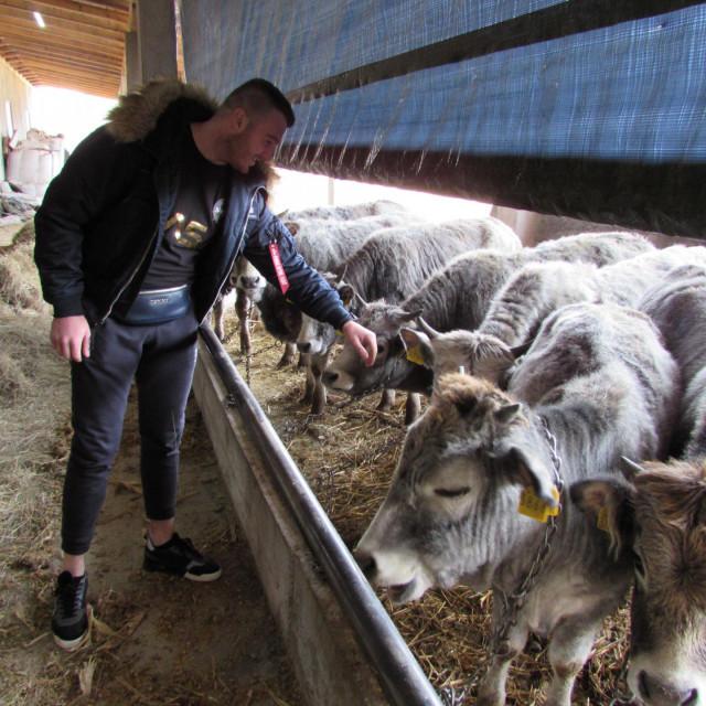 Jedan od mlađih mještana koji su odlučili ostati u Smiljanu i baviti se stočarstvom je 23-godišnji Igor Jelinić<br />