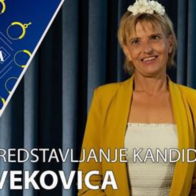 Frane Blažević, Konovizija