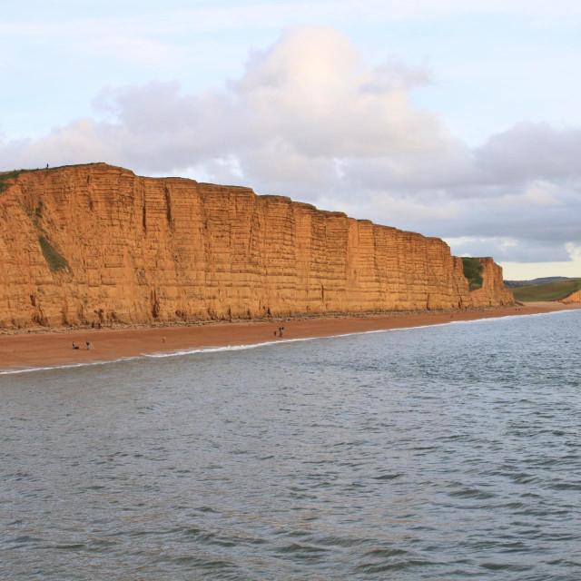 Litice na obali u Dorsetu