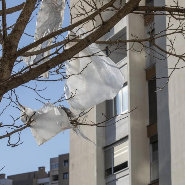 Plastične kese u krošnjama stabala<br />