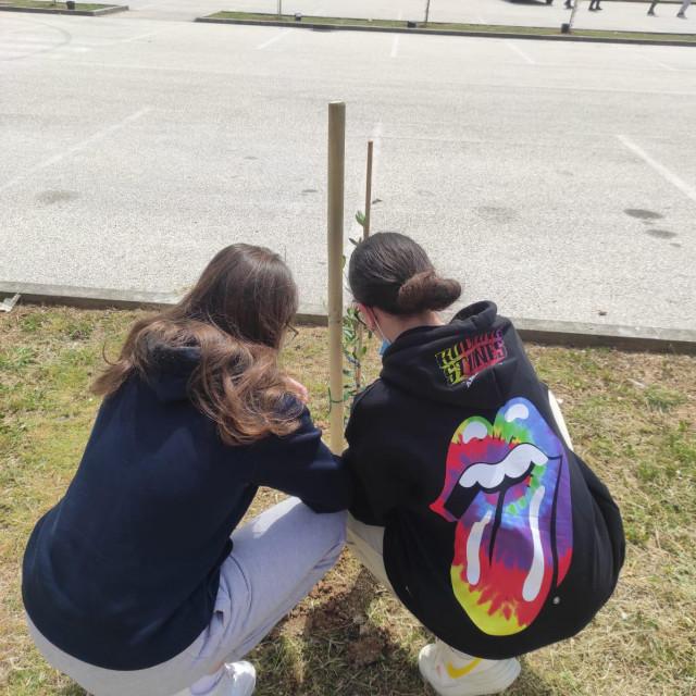 Učenici OŠ Dugopolje sade masline za Dan planeta Zemlje