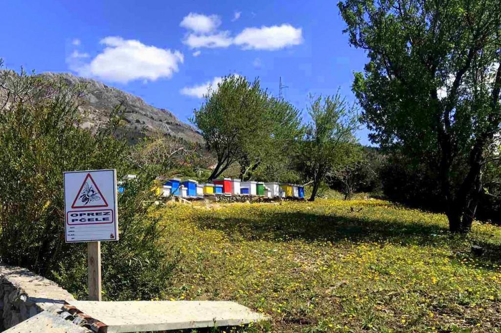 Župski pčelari udruge Ruzmarin