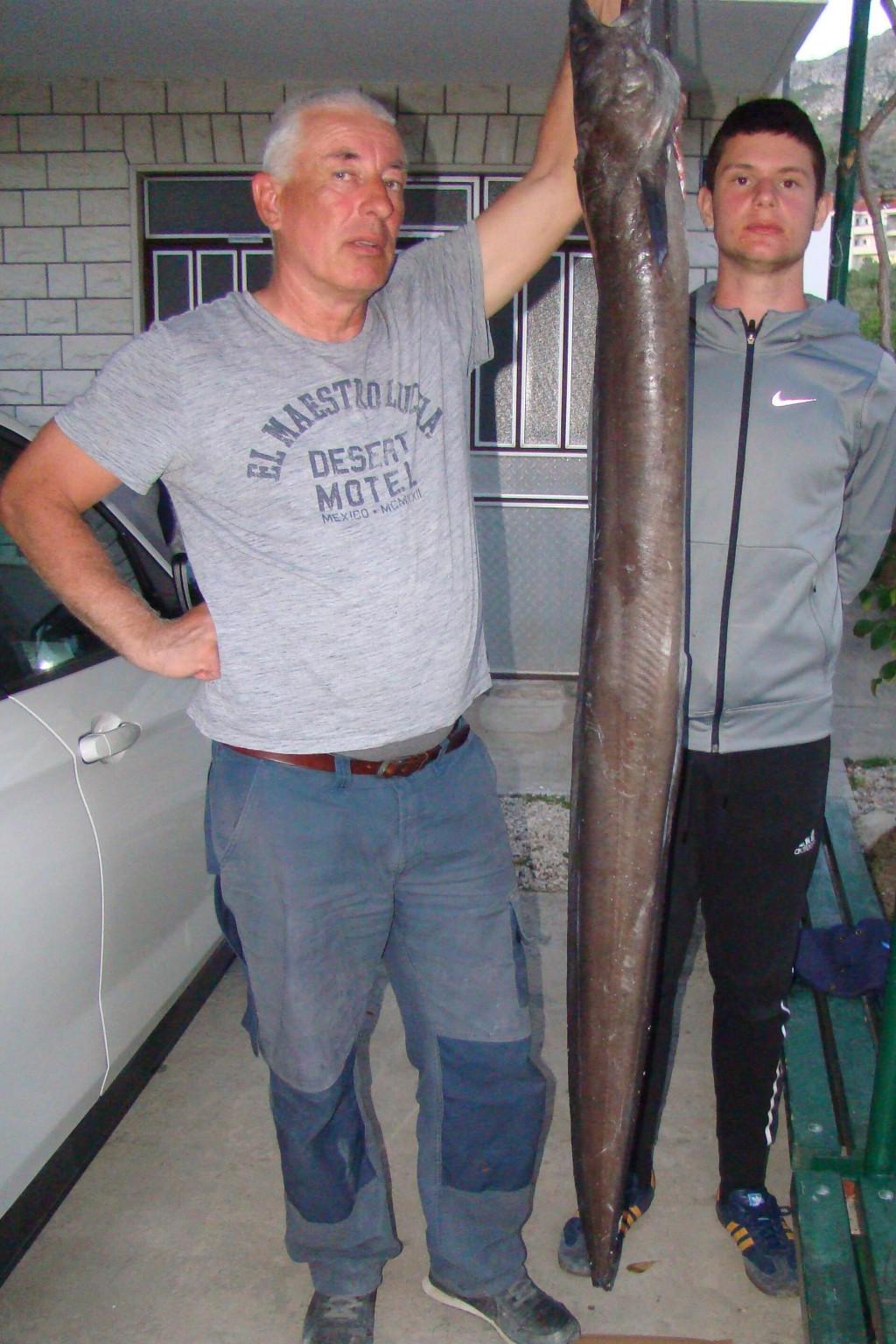 Ugor je bio dugačak 184 cm i nakon ispuštanja krvi težak 37,6 kg
