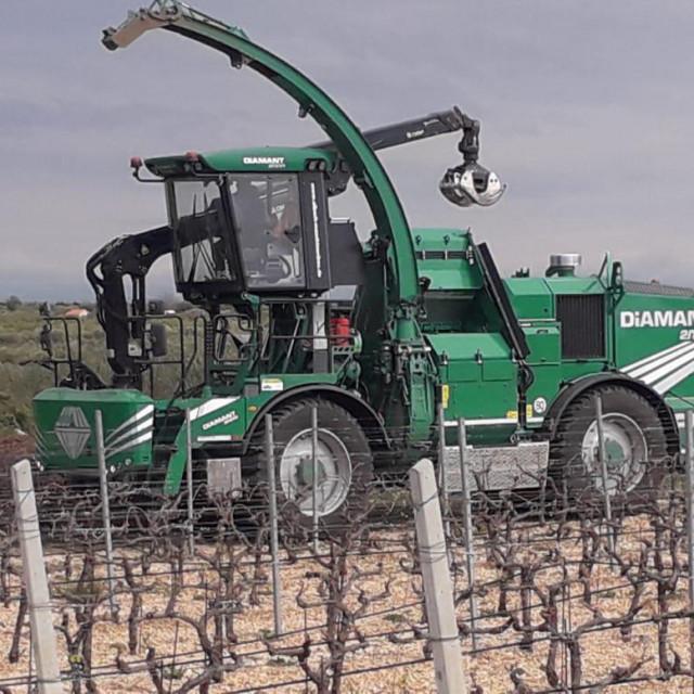Biomasa PZ Masline i vino