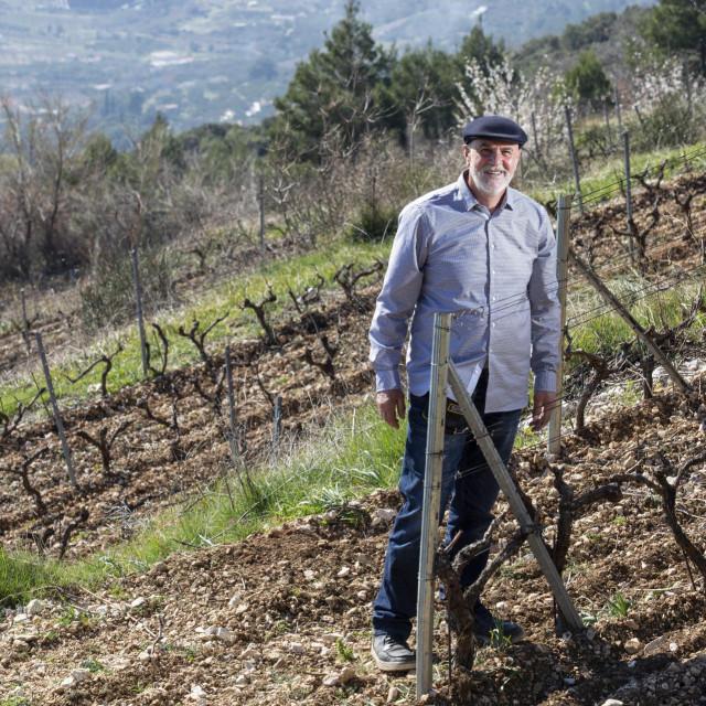 Jakša Bedalov u svome vinogradu na padinama Kozjaka, na 400 metara nadmorske visine