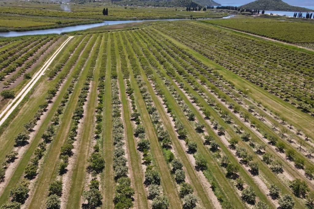 započelo je uzorkovanje tla na poljoprivrednim površinama u dolini Neretve