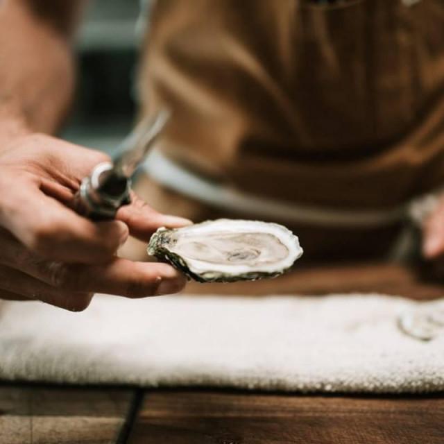 BLUEfasma, projekt mljevenja i pečenja ljuštura kamenica