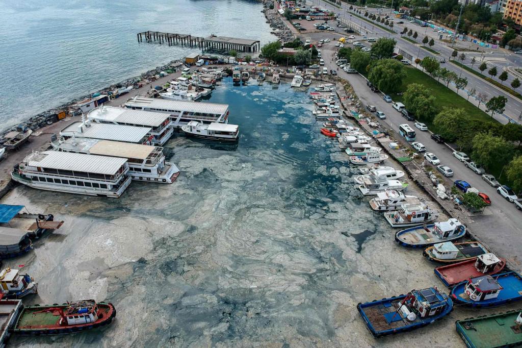 Morska sluz u Turskoj