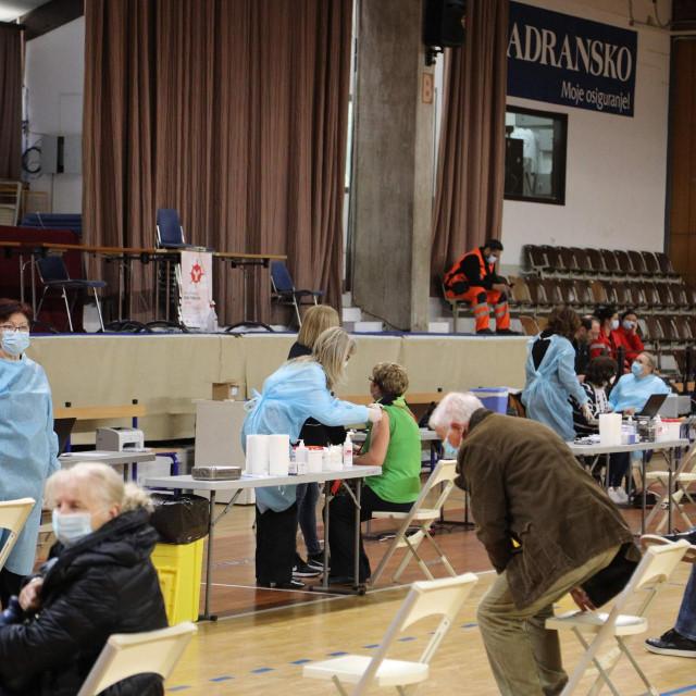 U Županiji se do sredine tjedna cijepilo 8987 osoba prvom dozom te 2047 osoba drugom dozom