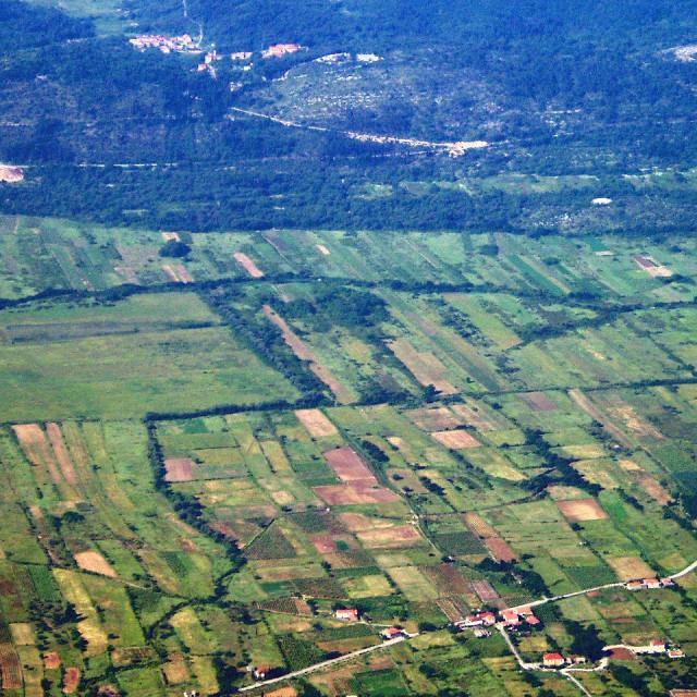 Konavosko polje