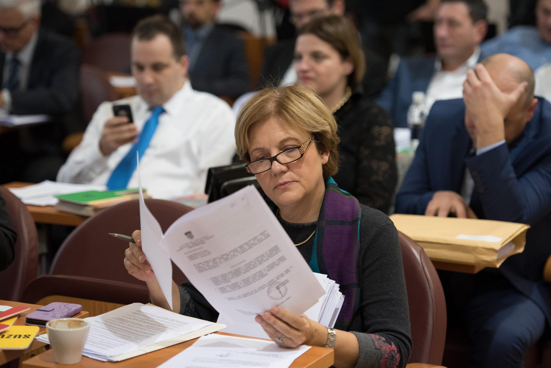 Za predsjednicu Županijske skupštine bit će predložena Terezina Orlić