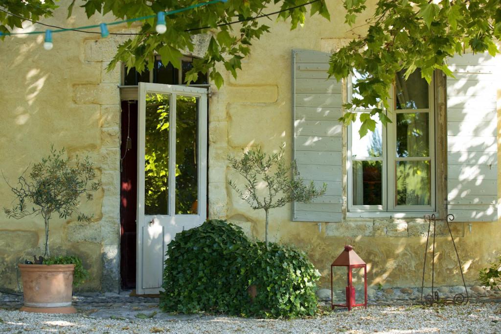 Patuljasta maslina sve je češća u interijerima i eksterijera uz kuće kojima daje dašak Mediterana