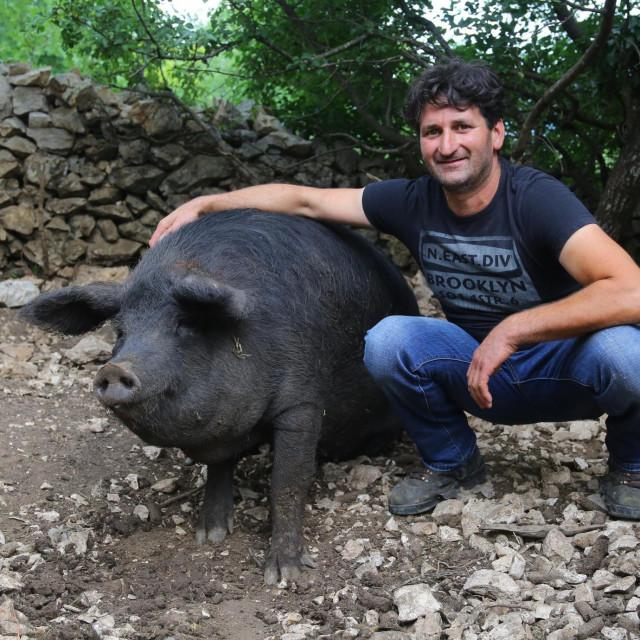 Ivan Družić: Namjera mi je doći od četiristo do petsto komada čime bi zaokružio uzgojnu priču o slavonskoj svinji na dalmatinskom kršu