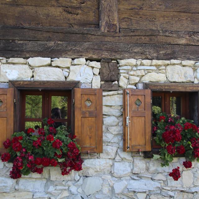 Cvijeće na drvenim prozorima