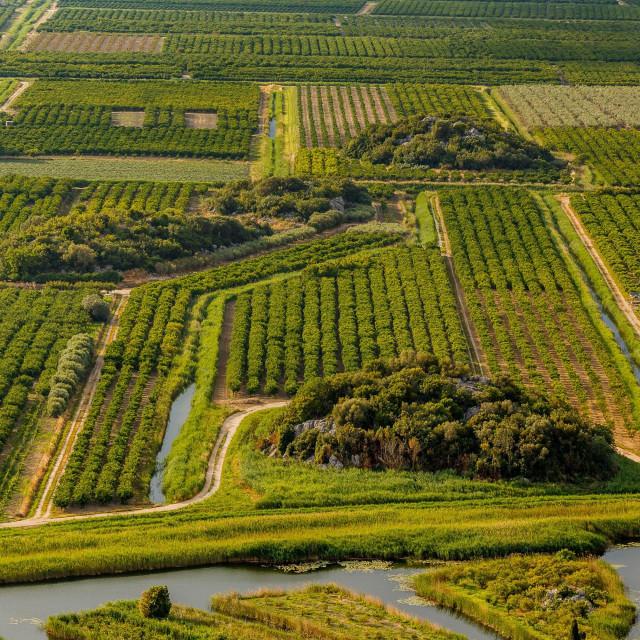 Budućnost doline Neretve je ekološka poljoprivreda<br /> <br />