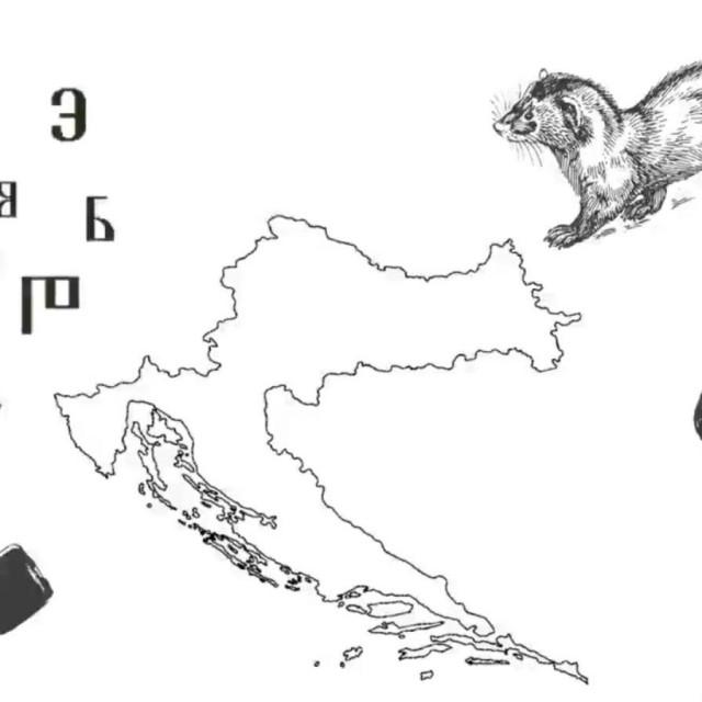 18641566
