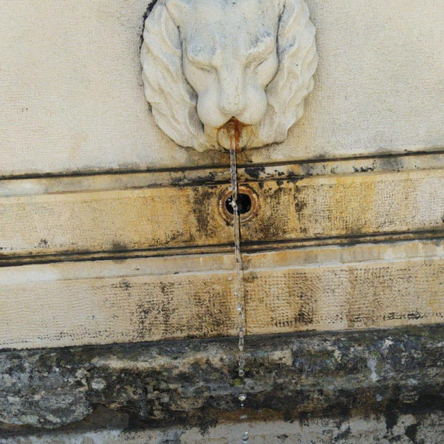 Proradile špine na Trgu pet bunara