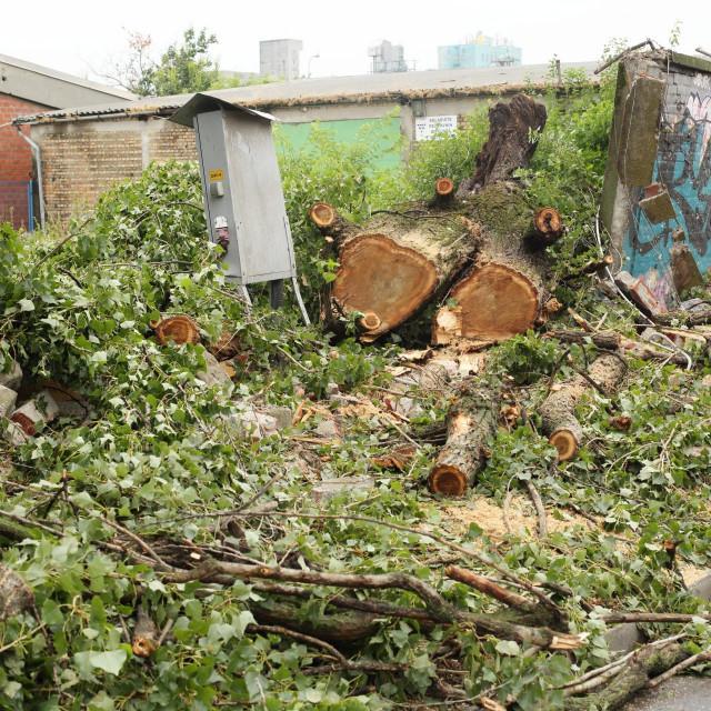 Posljedice jednog u nizu nevremena u Osijeku<br /> <br /> <br />